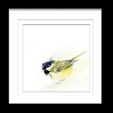 Great tit bird limited edition print