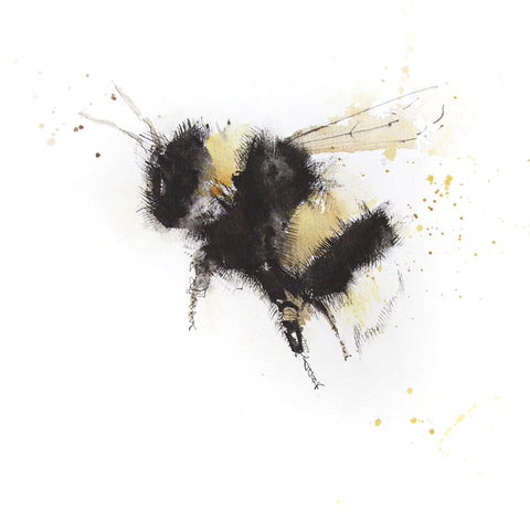 Signed print - Bumble bee - Jen Buckley Art limited edition animal art prints