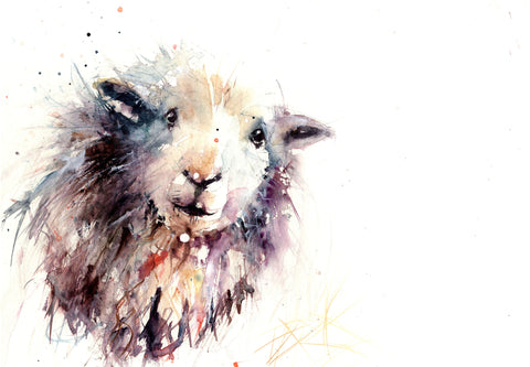 signed LIMITED EDITION PRINT of  original Herdwick sheep  painting