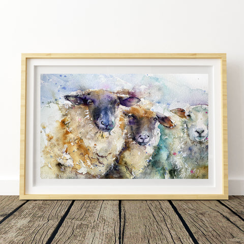 """Three ewes"" Limited edition print"