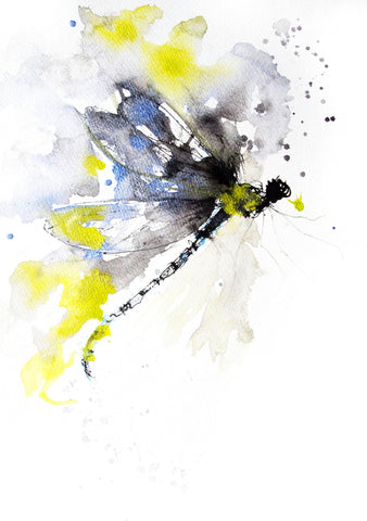 JEN BUCKLEY ART  signed PRINT  of my original DRAGONFLY watercolour