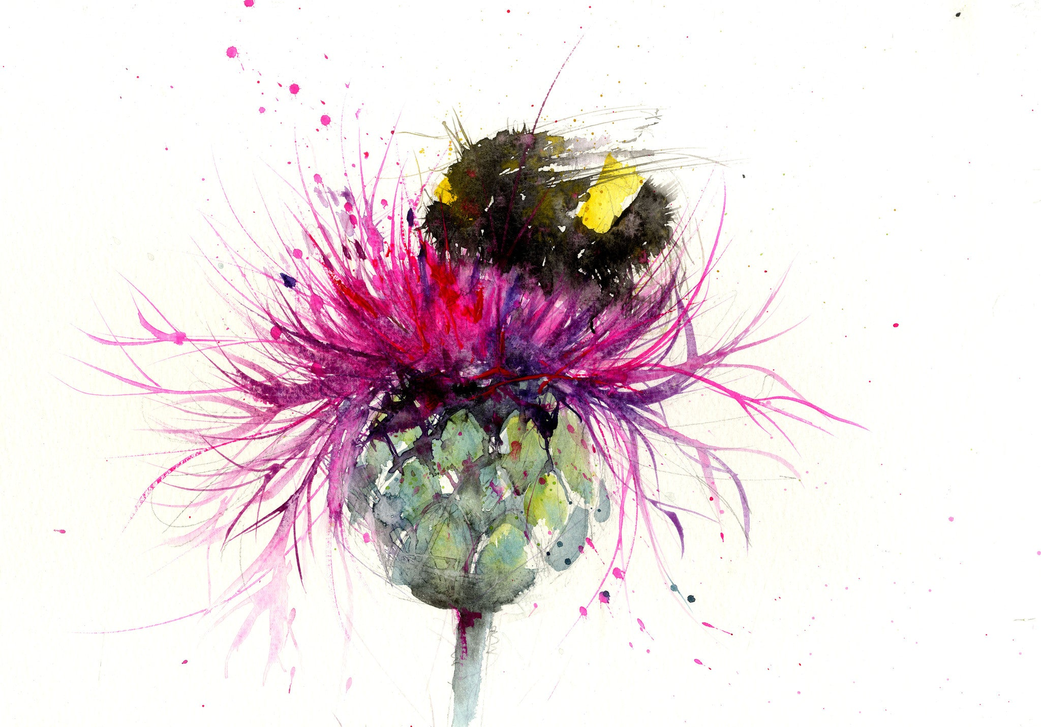 Home Products Original Watercolour Painting Bumble Bee On A Thistle