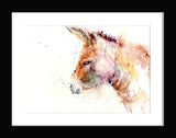 donkey watercolour by jen buckley