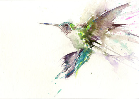 JEN BUCKLEY ART  signed limited edition PRINT of my original HUMMINGBIRD watercolour - Jen Buckley Art
