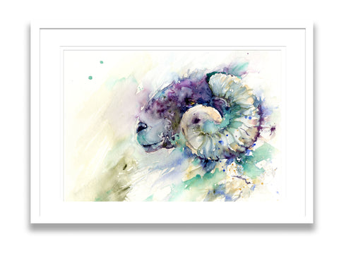LIMITED EDITION PRINT of  original ram/sheep painting livestock art Jen Buckley