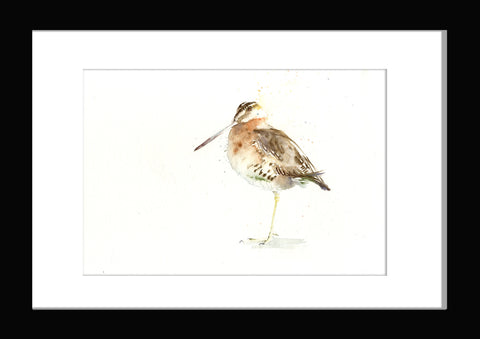 Jen buckley woodcock bird original watercolour painting