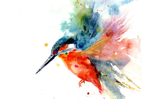 Kingfisher print by Jen Buckley