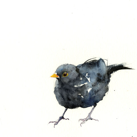 Blackbird limited edition print - Jen Buckley Art - 3