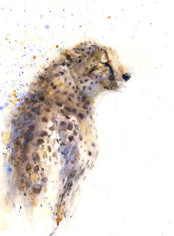 "cheetah ""Matrah""  limited edition print"