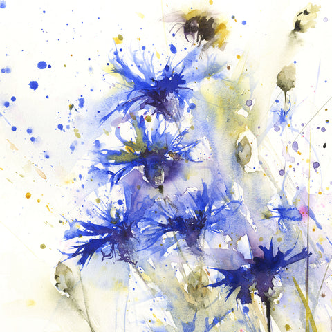 LIMITED EDITON PRINT of my original Bumble bee on a cornflower