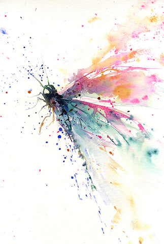 JEN BUCKLEY signed LIMITED EDITON PRINT from original DRAGONFLY watercolour painting