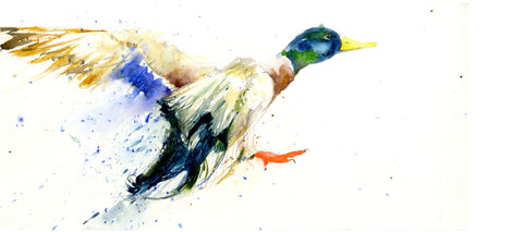 Limited edition print  'flying  duck'