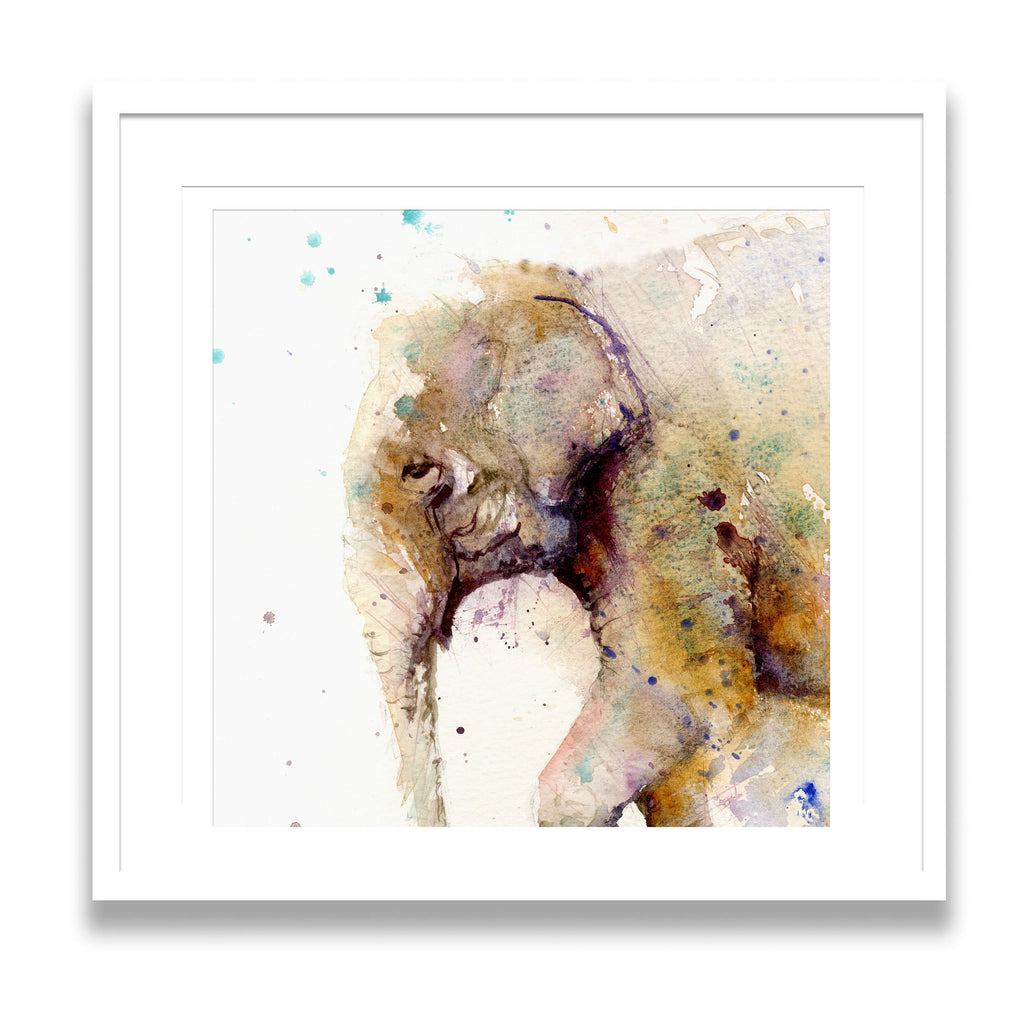 Asian elephant  limited edition art print