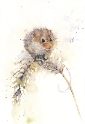 "Original watercolour painting ""Alice"" field mouse on a ear of corn"