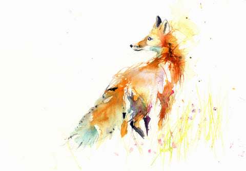 JEN BUCKLEY signed LIMITED EDITON PRINT 'Red Fox'