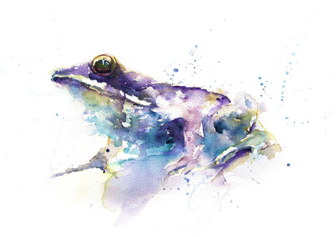 JEN BUCKLEY signed LIMITED EDITION PRINT of my original FROG watercolour