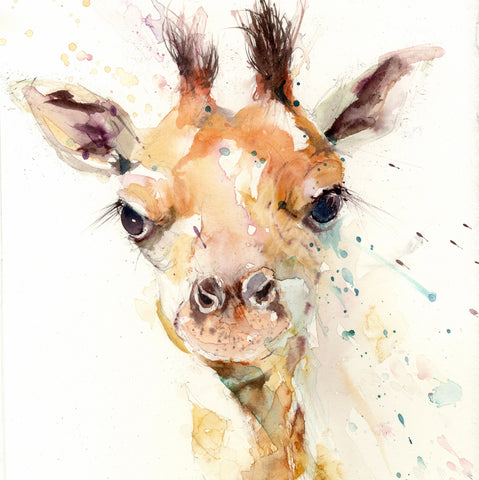 Cute baby giraffe limited edition art print