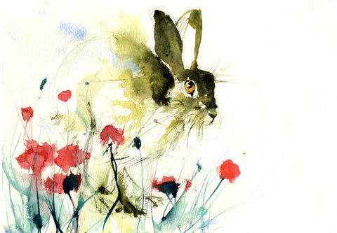 limited edition PRINT of my original HARE in a poppy field watercolour