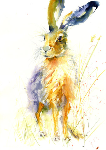 imited edition hare print - Jen Buckley Art limited edition animal art prints