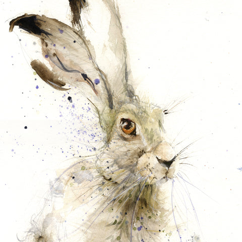 "Original sitting hare watercolour painting ""Harry"""