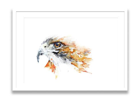 JEN BUCKLEY signed PRINT of my original HAWK watercolour painting