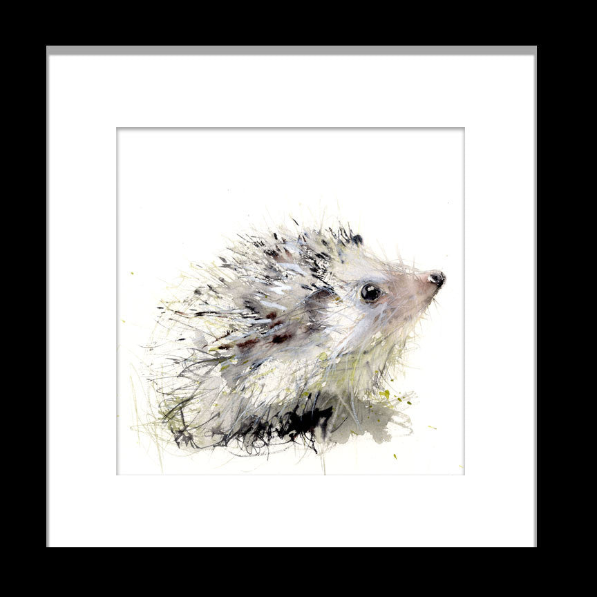 "limited edition print ""Hedgehog"""