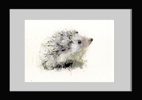 "limited edition hedgehog print  print ""Arthur"""