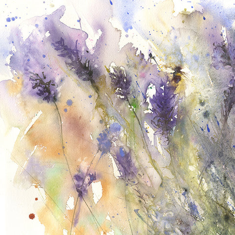 Bee on lavender flowers limited edition art print
