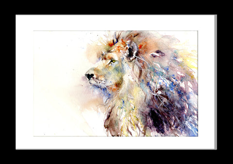 LIMITED EDITON PRINT Asiatic lion