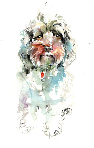 Limited edition cockapoo print