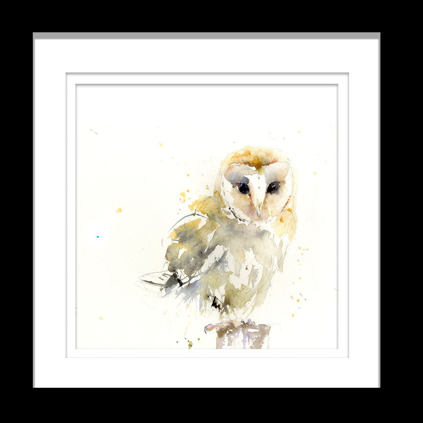 signed LIMITED EDITON PRINT barn OWL