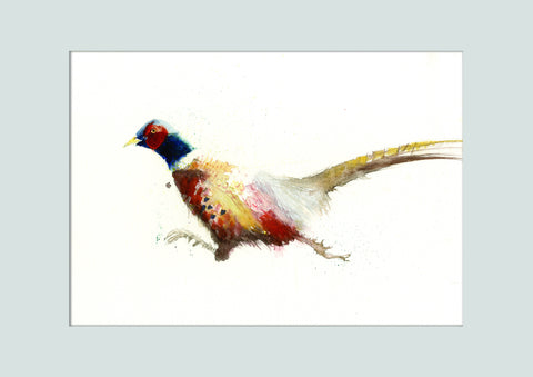 Original watercolour painting 'Running Pheasant' - Jen Buckley Art limited edition animal art prints
