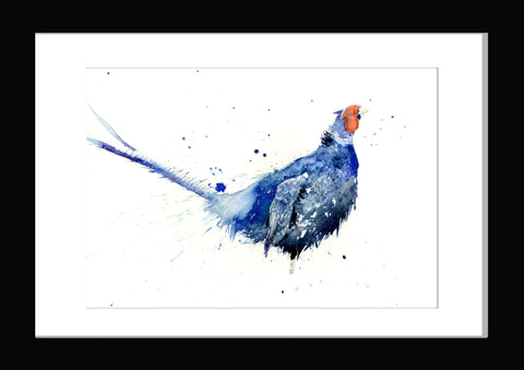 LIMITED EDITON  Blue pheasant watercolour print