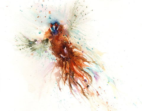 LIMITED EDITON print 'Flushed pheasant' from original watercolour painting