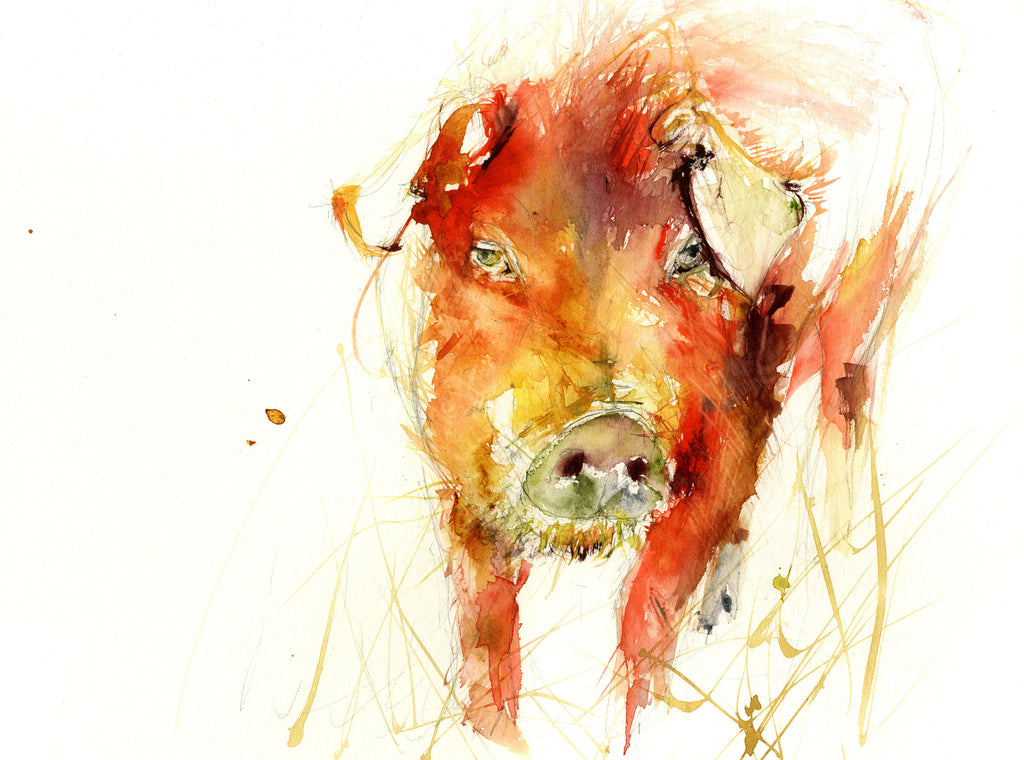 JEN BUCKLEY signed LIMITED EDITON PRINT of my original PIG - Jen Buckley Art limited edition animal art prints