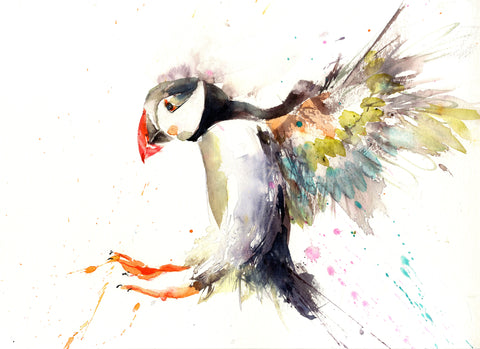 LIMITED EDITON PRINT of my original Flying PUFFIN