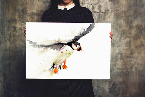 signed LIMITED EDITON PRINT of my original  puffin landing