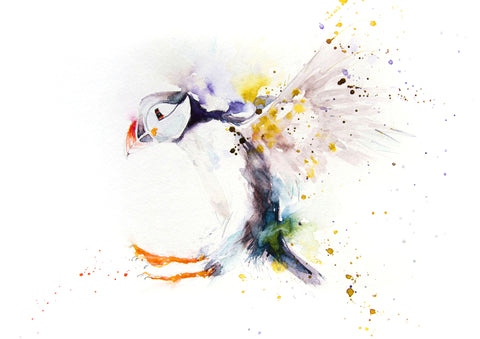 Signed LIMITED EDITION PRINT of original PUFFIN watercolour