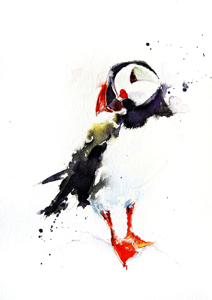 JEN BUCKLEY signed PRINT of  original PUFFIN watercolour - Jen Buckley Art limited edition animal art prints