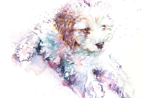"Original watercolour painting ""bichon frise puppy"""