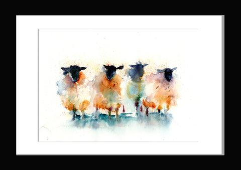 LIMITED EDITON PRINT of my original blackface SHEEP