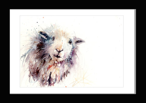 herdwick sheep watercolour print