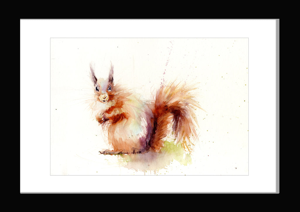 red squirrel watercolour print by Jen Buckley