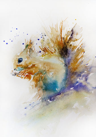JEN BUCKLEY ART  signed PRINT of my original SQUIRREL watercolour