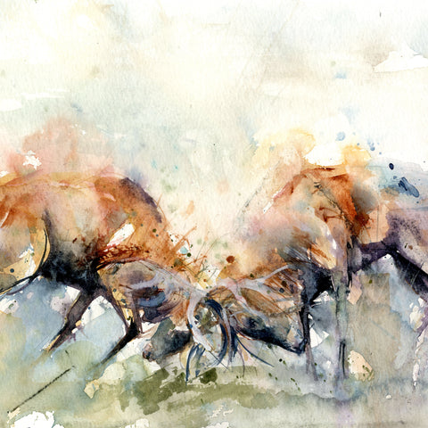 Signed LIMITED EDITION PRINT 'Rutting stags'