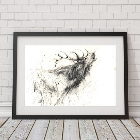Signed limited edition red deer print 'Calling'
