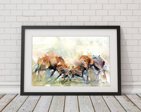 Rutting stags watercolour print by Jen Buckley