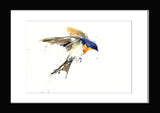 swallow bird print by jen buckley