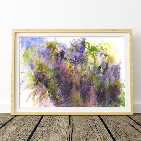 "Original watercolour painting ""Wisteria"""
