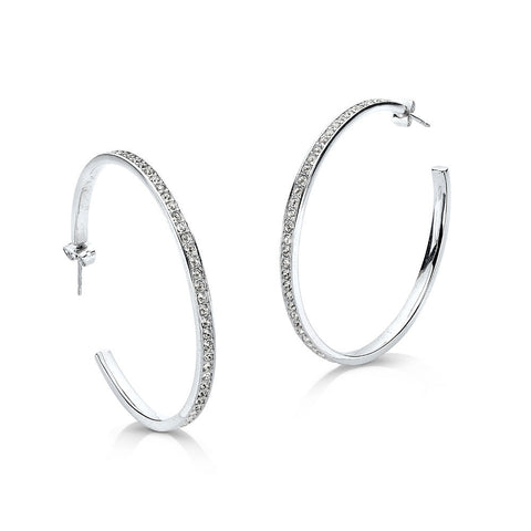Quintessential Hoop Earrings